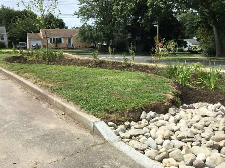 West Haven's first rain garden has been installed at Pagels Elementary School, according to the city. Photo: Robin D. Parsons / Contributed Photo
