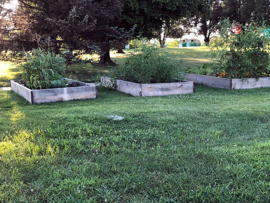 Vegetables and flowers live in these four- by eight-foot raised beds that were built in late April for Glen Carbon residents who might not have space at home to grow a garden. Photo: Charles Bolinger | The Intelligencer