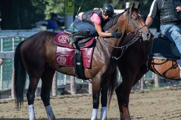 Last years TraversA?• winner Catholic Boy gets a hug from his exercise rider Tracey Marie Brown after his breeze this morning at the Saratoga Race Course Friday Aug. 23, 2019 in Saratoga Springs, N.Y. Photo special to the Times Union by Skip Dickstein