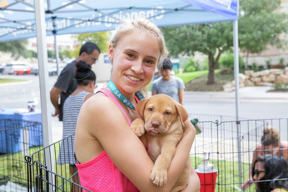 S.A. residents were able to come out to SNIPSA's adoption event at Snooze on Saturday, August 24, 2019.