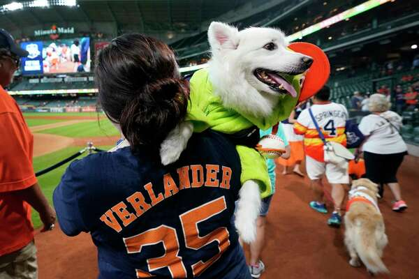 Jen Kazmerski, of Houston, carries her American Eskimo dog, Poco, dressed as Orbit, the mascot of the Houston Astros, during the on field parade during the annual Astros Dog Day held before the Houston Astros and Los Angels Angels MLB game at Minute Maid Park Sunday, Aug. 25, 2019, in Houston.