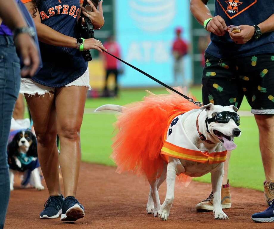 PHOTOS: A look at the dogs fans brought to Sunday's Astros game