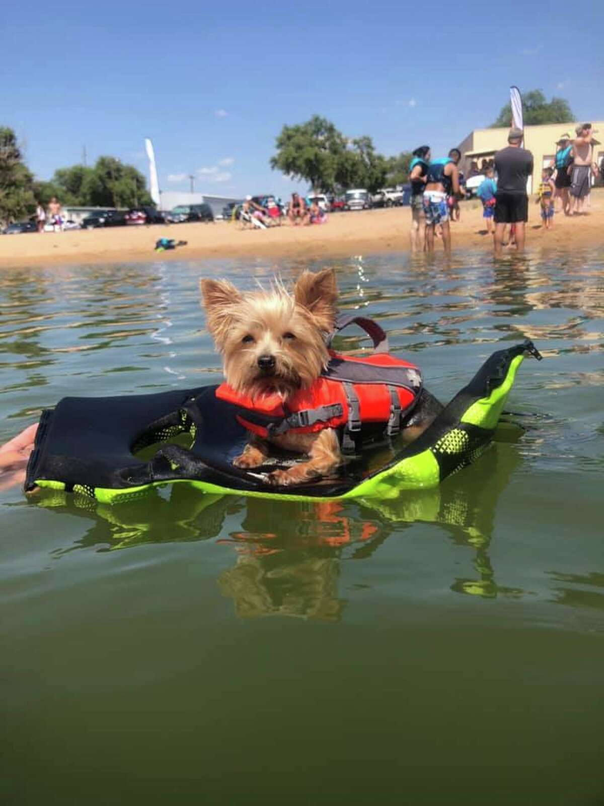 Katness with her life jacket taking a break floating on her brothers life jacket