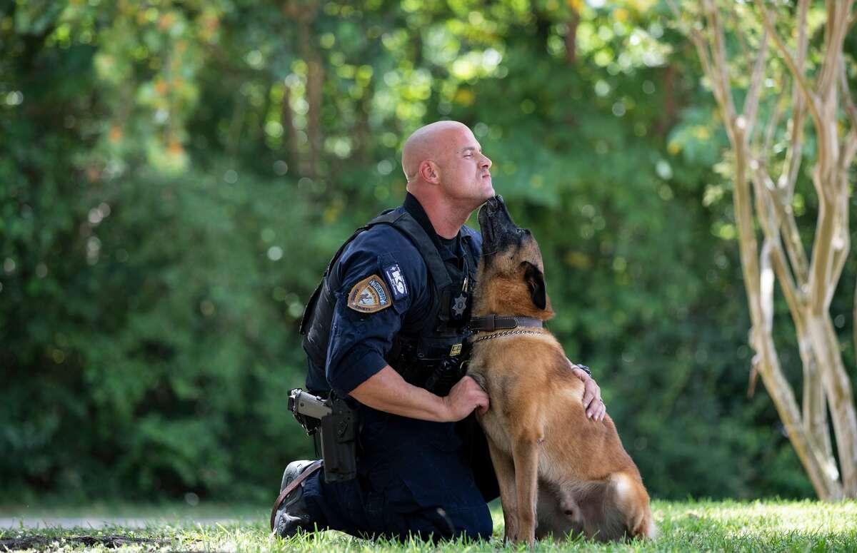 K9: Bady Handler: Deputy Clayton Marshall Type: Patrol/Narcotics Age: 6 Breed: Belgain Malinios Bio: Bady'shobbies include long walks on the streets while drinking a puppuccino from Starbucks.