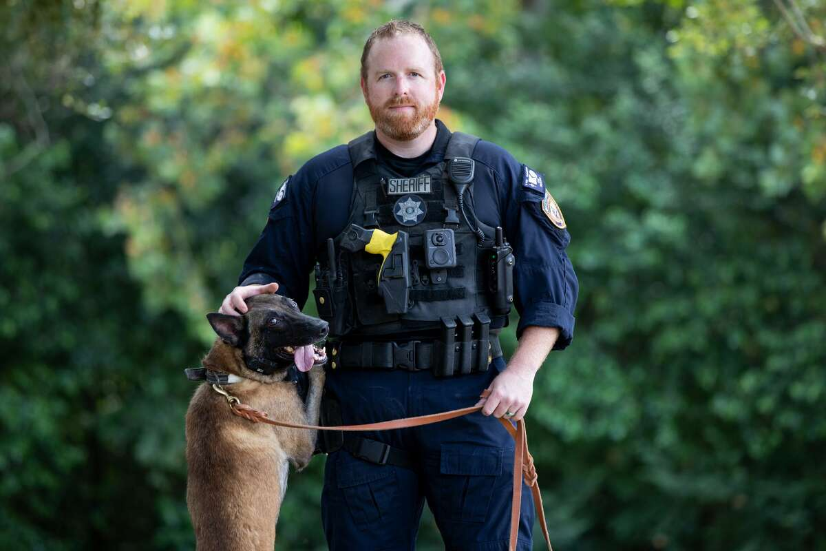K9: Cezar Handler: Deputy Kenny Taylor Type: Patrol/Narcotics Age: 3 Breed: Belgian Malinois