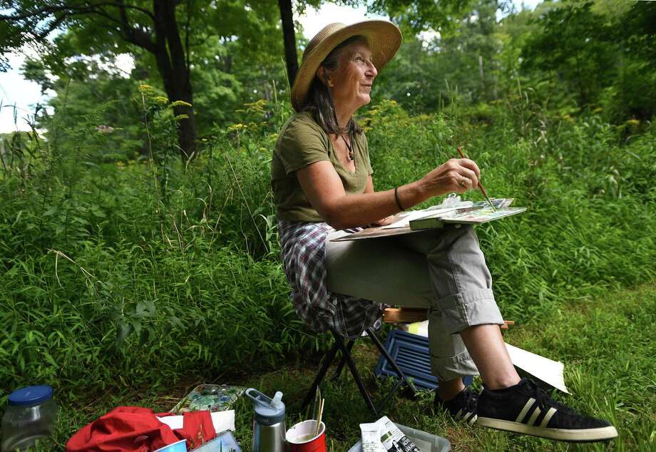 Francesca Monro, of Wilton, paints in a wildflower meadow during the Art in the Park Annual Festival at Weir Farm National Historic Site on Sunday. The site was the summer residence of American impressionist painter J. Alden Weir. Photo: Brian A. Pounds / Hearst Connecticut Media / Connecticut Post