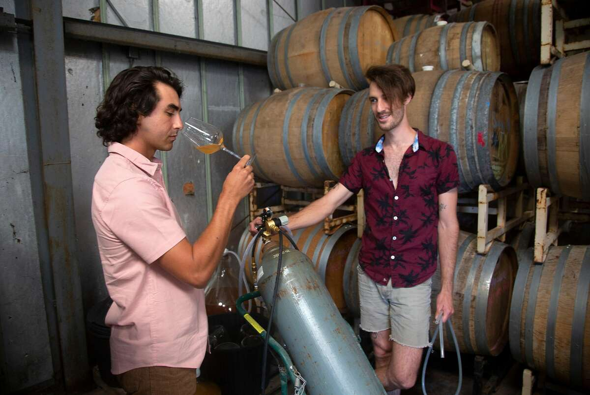Brent Mayeaux looks on as fellow winemaker James Jelks tastes Mayeaux's just pressed sauvignon blanc at their shared winery near Aromas, California on Friday, 8/17, 2019. Four young
