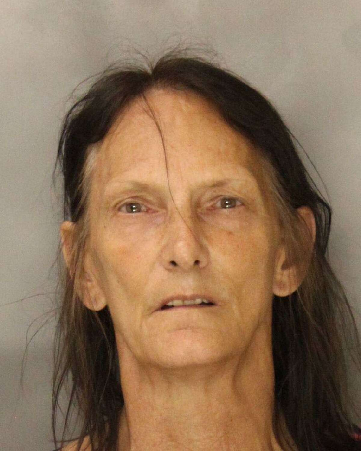 Debra McNeil, 52, was arrested on suspicion of attempted robbery, burglary and criminal conspiracy.