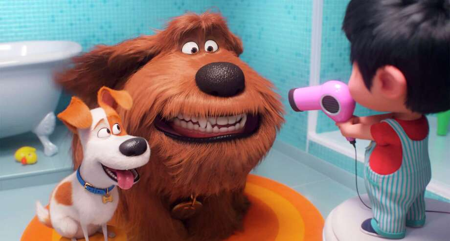 """This file image released by Universal Pictures shows Max, voiced by Patton Oswalt, from left, Duke, voiced by Eric Stonestreet and Liam, voiced by Henry Lynch in a scene from """"The Secret Life of Pets 2."""" Photo: © 2019 UNIVERSAL STUDIOS, HONS / Associated Press / © 2019 UNIVERSAL STUDIOS"""