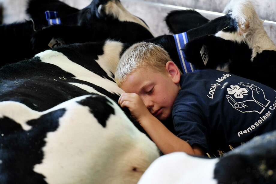 William Cottrell, 9, Johnsonville cuddles up to one the Holstein calfs he's showing from Lamb-Hill Holsteins at the Schaghticoke Fair on Wednesday, Aug. 28, 2019, in Schaghticoke, N.Y. The fair runs through Monday from 10 a.m. to 10 p.m. (Will Waldron/Times Union) Photo: Will Waldron, Albany Times Union / 40047487A