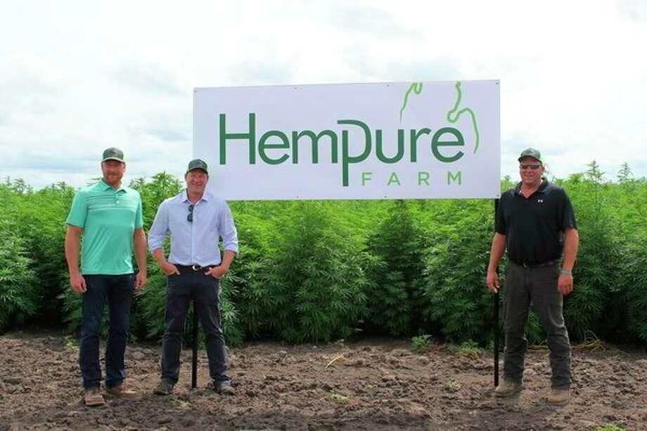 Clint, Keith, and Brad Hagen at the edge of Hempure Farm in Sheridan Township. Hempure grows industrial hemp across 340-acres. (Robert Creenan/Huron Daily Tribune)