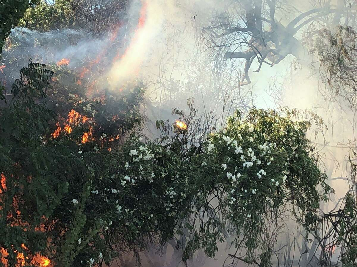 A vegetation fire has spread to at least two structures in Byron, officials said.
