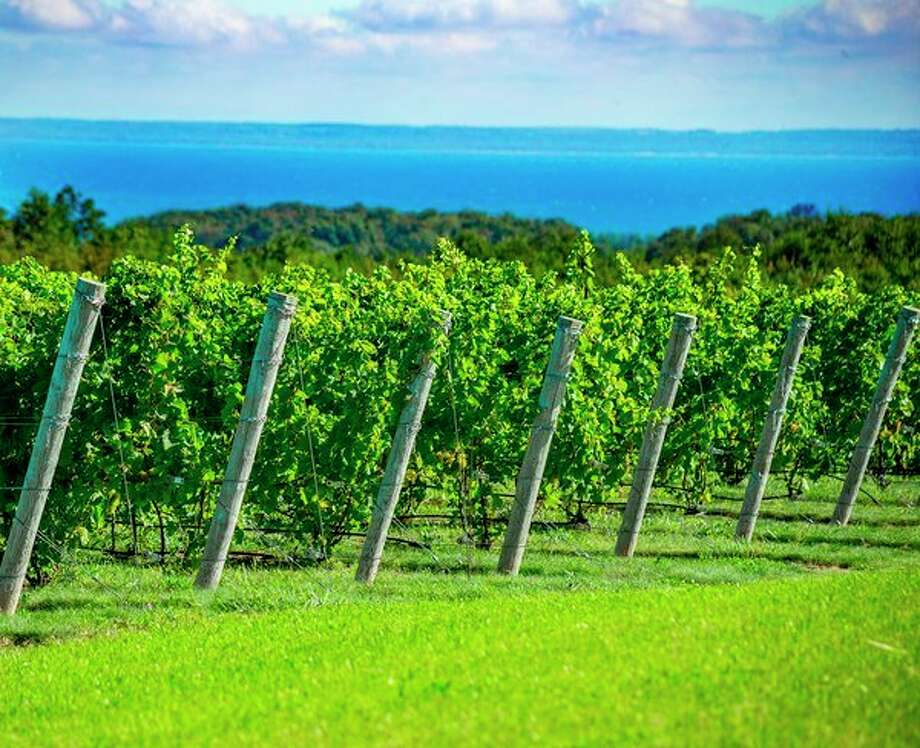 Midlanders who travel to the Leelanau Peninsula will find a wide range of wines. (Photo provided/Leelanau Peninsula Wine Trail) / 2015 JohnRobertWilliams