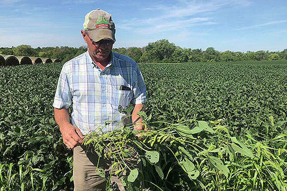 """Farmer Randy Miller, who farms corn and soybeans, is among farmers unhappy with President Donald Trump over waivers granted to oil refineries that have sharply reduced demand for corn-based ethanol. Miller called it """"our own country stabbing us in the back."""" Photo: Julie Pace 