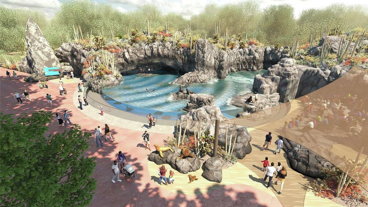 An artist's rendering of the sea lion exhibit, part of a Galapagos Islands experience that will greet visitors to the Houston Zoo after a major redesign of the entrance in 2022.