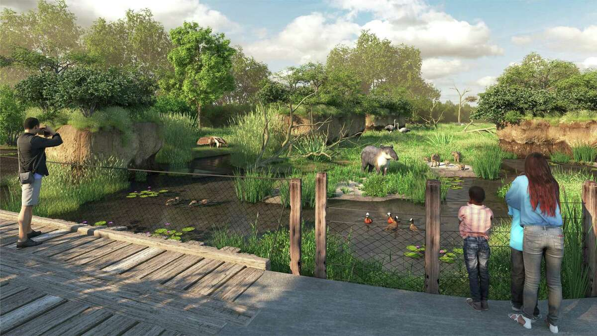 An artist's rendering of a mixed species habitat in the South American Pantanal exhibit under construction at the Houston Zoo that will feature anteaters, tapirs, capybaras and rheas.