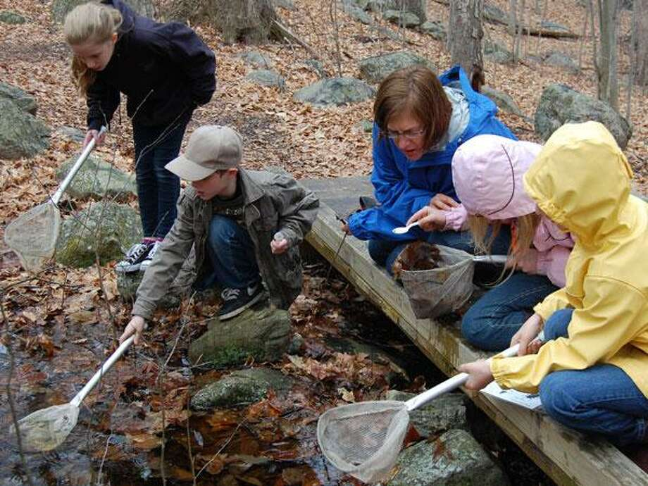 A Stream Hunters event will take place Sept. 22 at the Stamford Museum & Nature Center. Photo: Www.stamfordmuseum.org