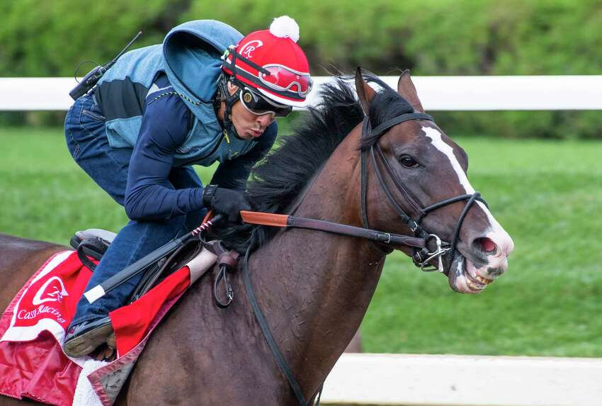 War of Will with exercise rider Sammy Jimenez aboard breezes at the Saratoga Race Course in preparation for the Pennsylvania Derby Sunday Sept. 1, 2019 in Saratoga Springs, N.Y. Photo Special to the Times Union by Skip Dickstein