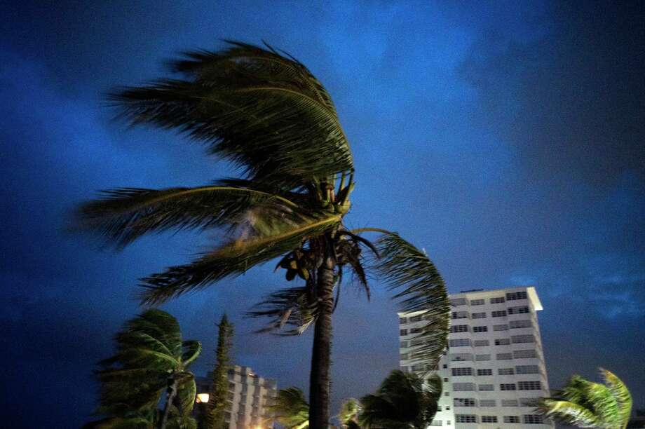 Strong winds move the palms of the palm trees at the first moment of the arrival of Hurricane Dorian in Freeport, Grand Bahama, Bahamas, Sunday Sept. 1, 2019. (AP Photo/Ramon Espinosa) Photo: Ramon Espinosa / Associated Press / Copyright 2019 The Associated Press. All rights reserved.