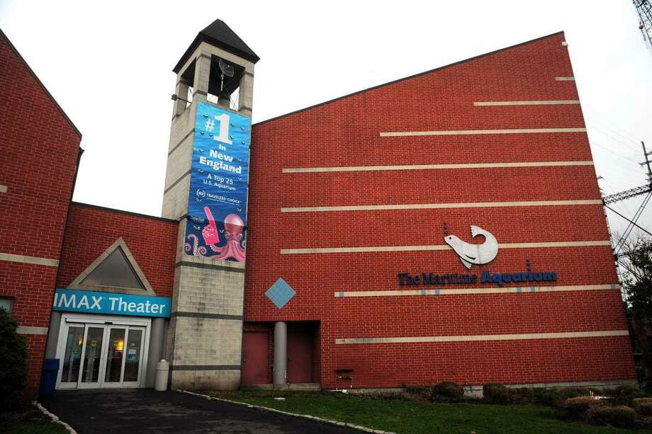 A new environmental cleanup event will be held Sunday that will start at the Maritime Aquarium. Photo: Ned Girard / Hearst Connecticut Media / Norwalk Hour