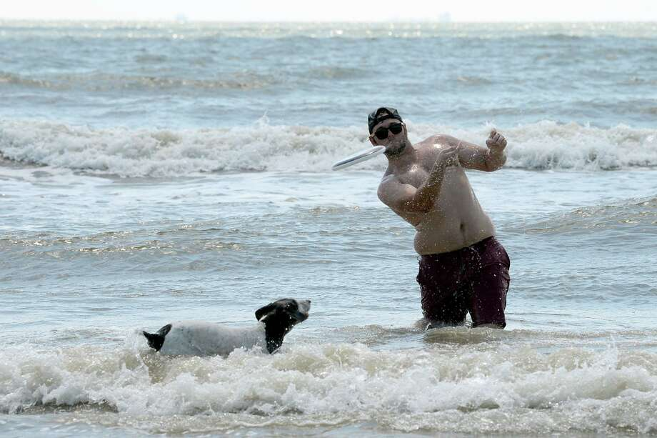 Jasmine, a German shepherd pointer, watches Jesse Pilgrim throw a flying disc to his friends at Crystal Beach on Labor Day. Beachgoers enjoyed sunny weather and no traffic on the sand. Photo taken Monday, 9/2/19 Photo: Guiseppe Barranco/The Enterprise, Photo Editor / Guiseppe Barranco ©