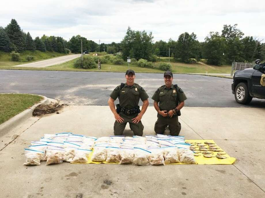 Conservation Officers Joshua Wright (left) and Mark Papineau confiscated more than 1,400 illegal panfish from a Gladwin, Michigan, man. Papineau had received several tips about a man suspected of poaching larger numbers of fish from Lake Lancer, located in Gladwin County. (Courtesy Photo)