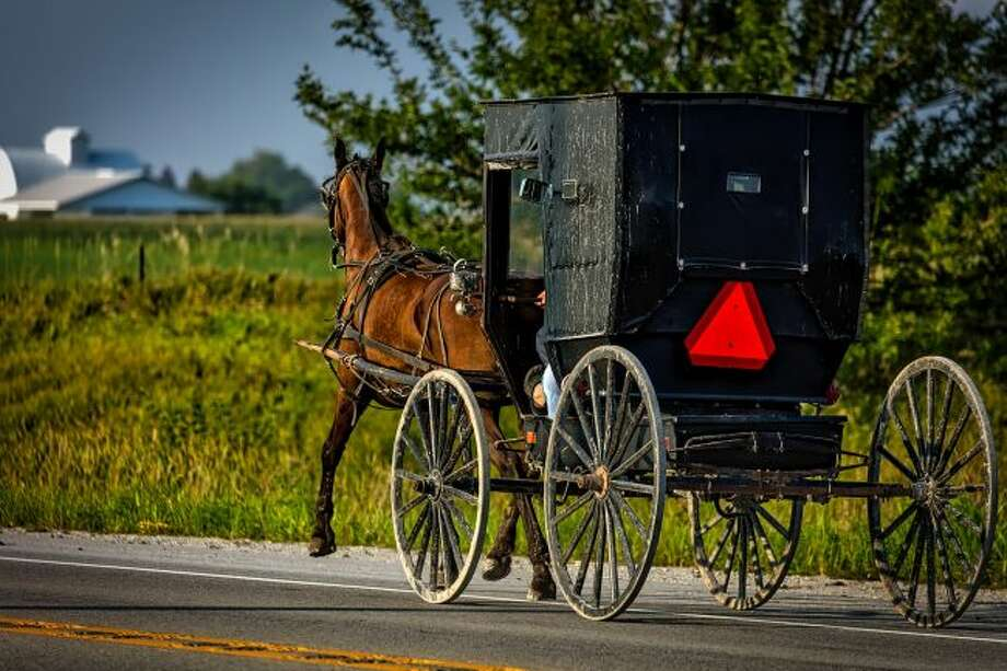 Proposed signs are intended to alert motorists to the growing Amish community in Manistee county. (Courtesy Photo)