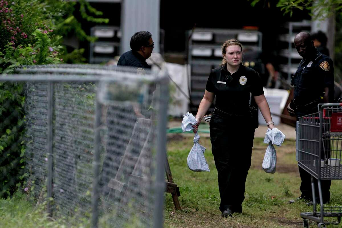 An San Antonio Animal Care Services officer carries bags containing snakes removed from a home in the 500 block of Kayton Avenua on San Antonio's Southside, Wednesday, Sept. 5, 2018. Around 100 snakes, including two 12-15 foot long reticulated pythons were discovered at the home.