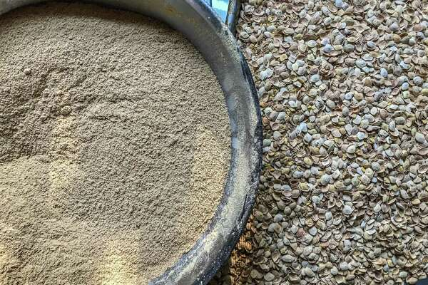 How to make flour from the mesquite pods in your San Antonio yard