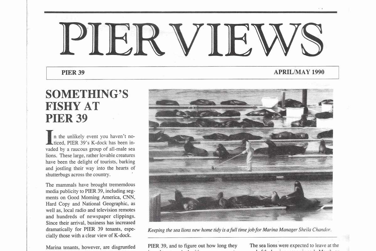 A news clipping from May 1990 shows Chandor scrubbing the docks at Pier 39.
