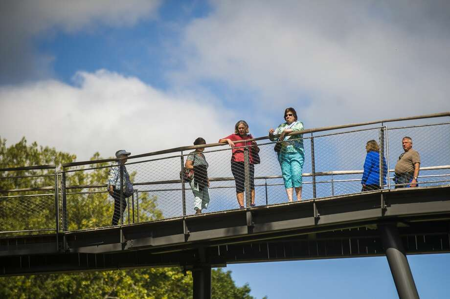 Guests explore the Whiting Forest Canopy Walk Wednesday, Sept. 4, 2019 in Midland. (Katy Kildee/kkildee@mdn.net) Photo: (Katy Kildee/kkildee@mdn.net)