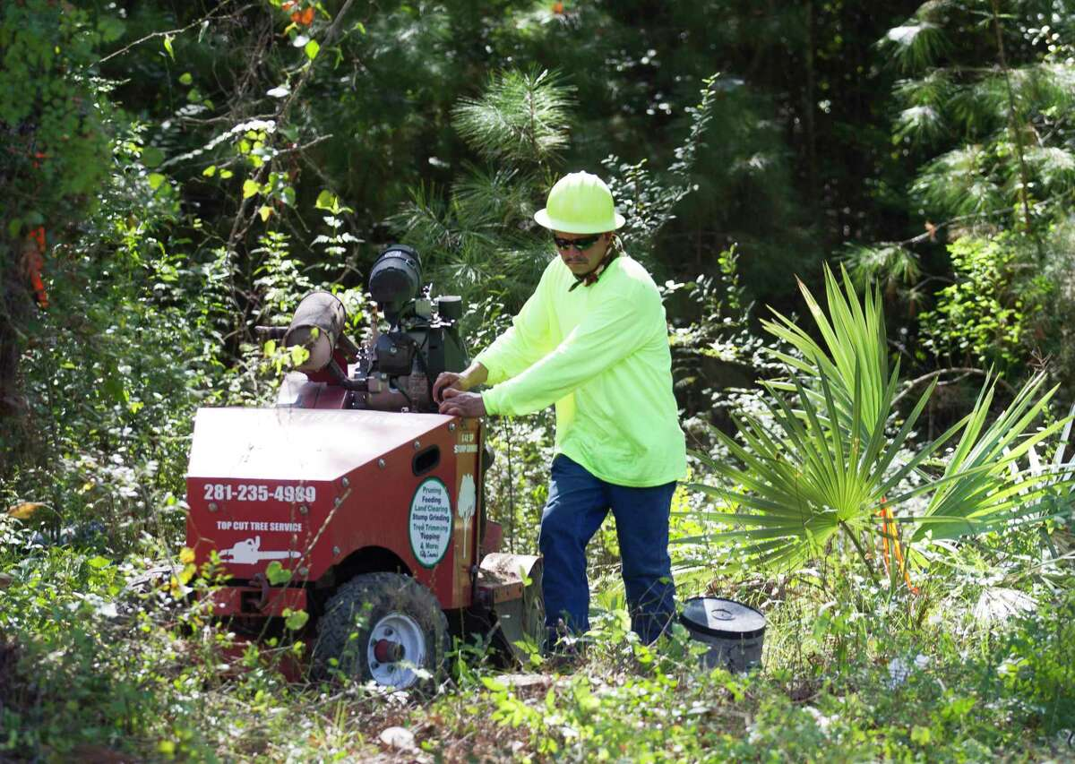 Workers clear the right of way section of North 10th Street in front of the Conroe Community Cemetery between the Oakwood Cemetery and Old Normal College property for a fence to be installed, Tuesday, Sept. 3, 2019, in Conroe. The densely wooded property is the final resting place for dozens of black who settled in Montgomery Coutny during the post Civil War era.