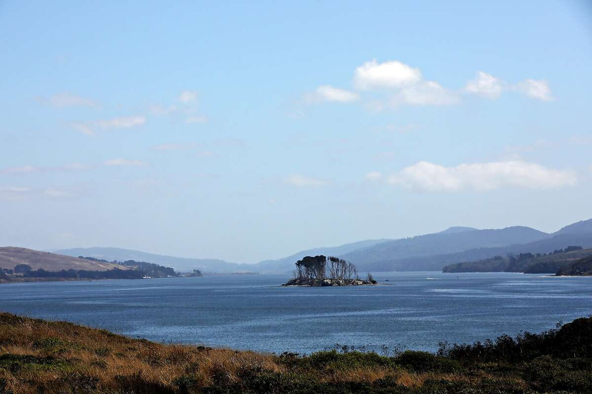Hog Island is seen from Tom's Point in Tomales Bay, Calif., on Thursday, August 29, 2019. The Coast Miwok and Southern Pomo Indians of Marin County were not exterminated by Spanish and American colonists. They not only survived colonization, but they preserved and passed on their culture and traditions for many decades, often living independently in their old stomping grounds while an often hostile culture grew around them, according to a study by Tsim Schneider, assistant professor, department of anthropology, University of California, Santa Cruz, and Lee Panich, of Santa Clara University. They found from artifacts recovered from Tom's Point, in Tomales Bay, and other sites in Marin County that the native people persisted despite the missions and discriminatory policies by the federal government. In many ways, their legacy lives on in society today, according to Schneider, a member of the Federated Indians of Graton Rancheria, the federally recognized tribe of Coast Miwok and Southern Pomo people.
