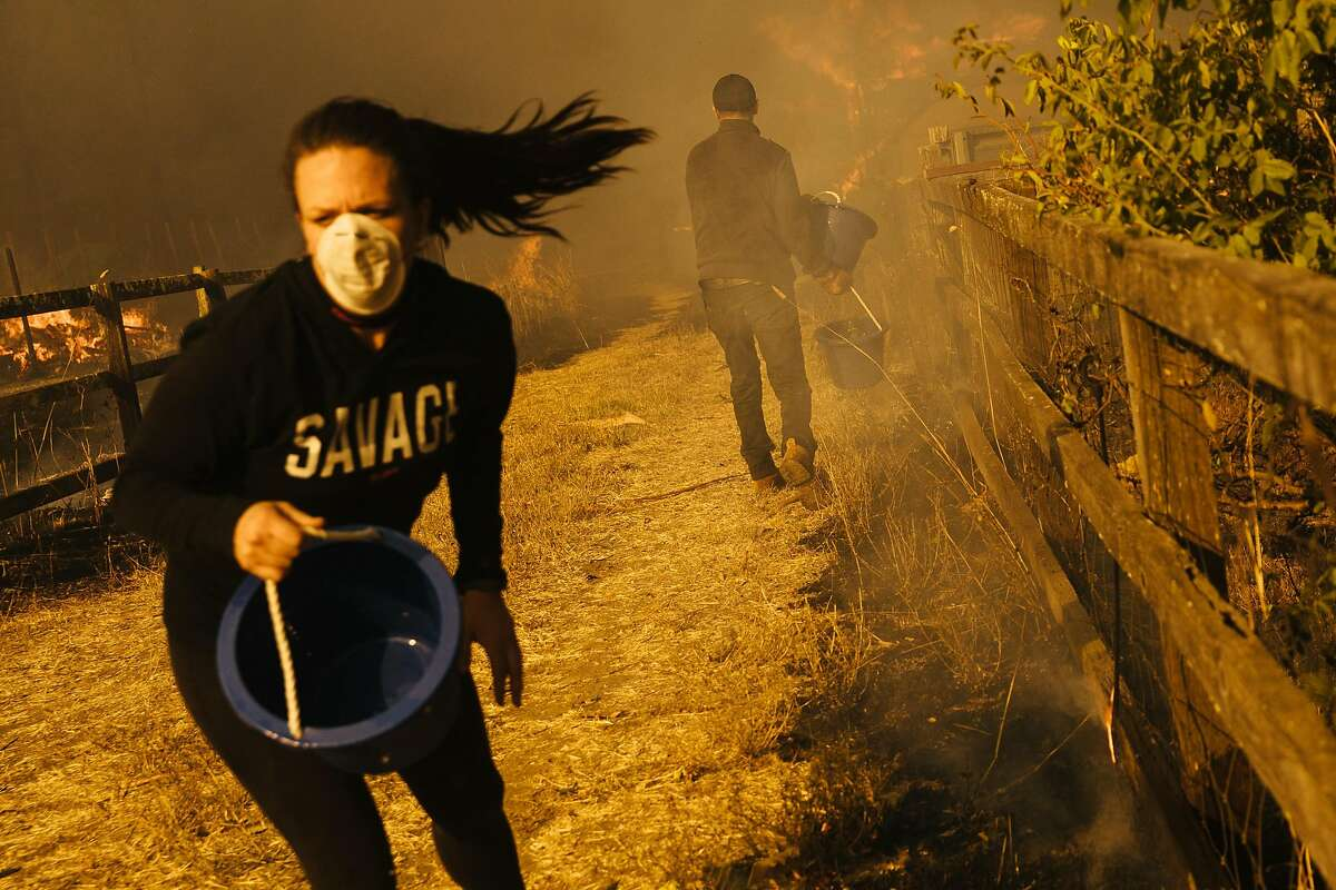 """Susie Savage, wearing a """"Savage"""" shirt, and another neighbor use water buckets to douse hot spots ignited by falling embers around a house on Baird Road in Santa Rosa, Calif. They and firefighters were able to save the house. (Mason Trinca, San Francisco Chronicle - Oct. 9, 2017)"""