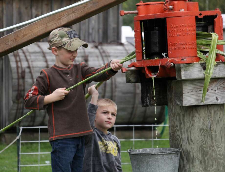 Thousands filled the grounds of the Thumb Octagon Barn over the weekend for the 24th annual Fall Family Days. The two-day event featured a number of live farming demonstrations, displays and look back at the Thumb's rich history. Photo: Bradley Massman/Huron Daily Tribune
