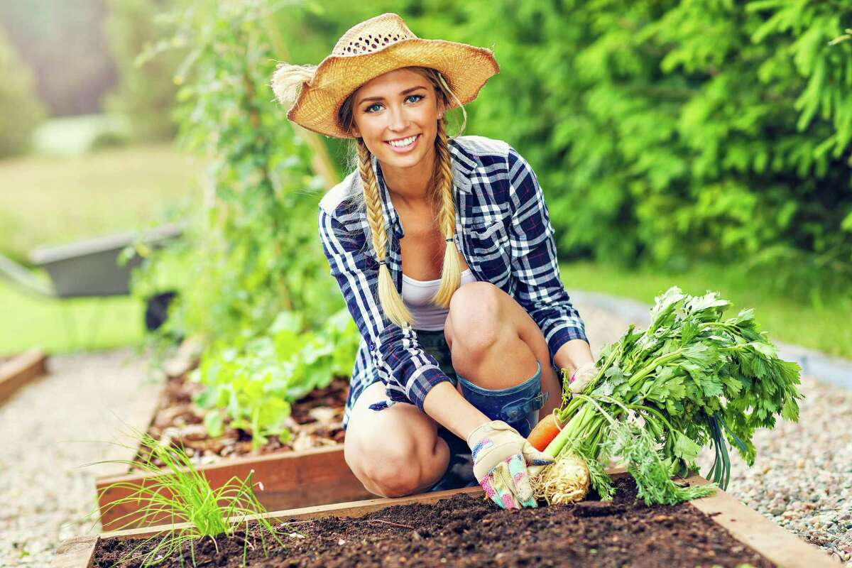 Early fall is the perfect time to plan for next spring's vegetable garden. Be sure to take good notes now so you will know what and where to plant once winter is over.