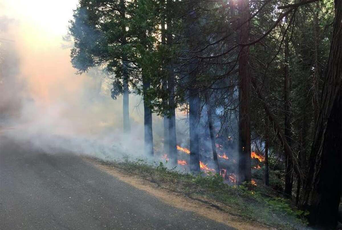 U.S. Forest Service crews are conducting controlled burns to reduce fuels in the Rosasco Meadow area of the Stanislaus National Forest west of Yosemite, where a strange underground fire is burning. The fire has been smoldering for at least five years, and foresters aren't sure what caused it or how it's being fueled.