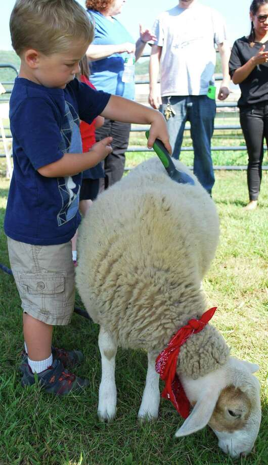 Sunny Valley Preserve in New Milford will hold Open Farm Day Sept. 21 this year. Photo: Deborah Rose / Deborah Rose / The News-Times