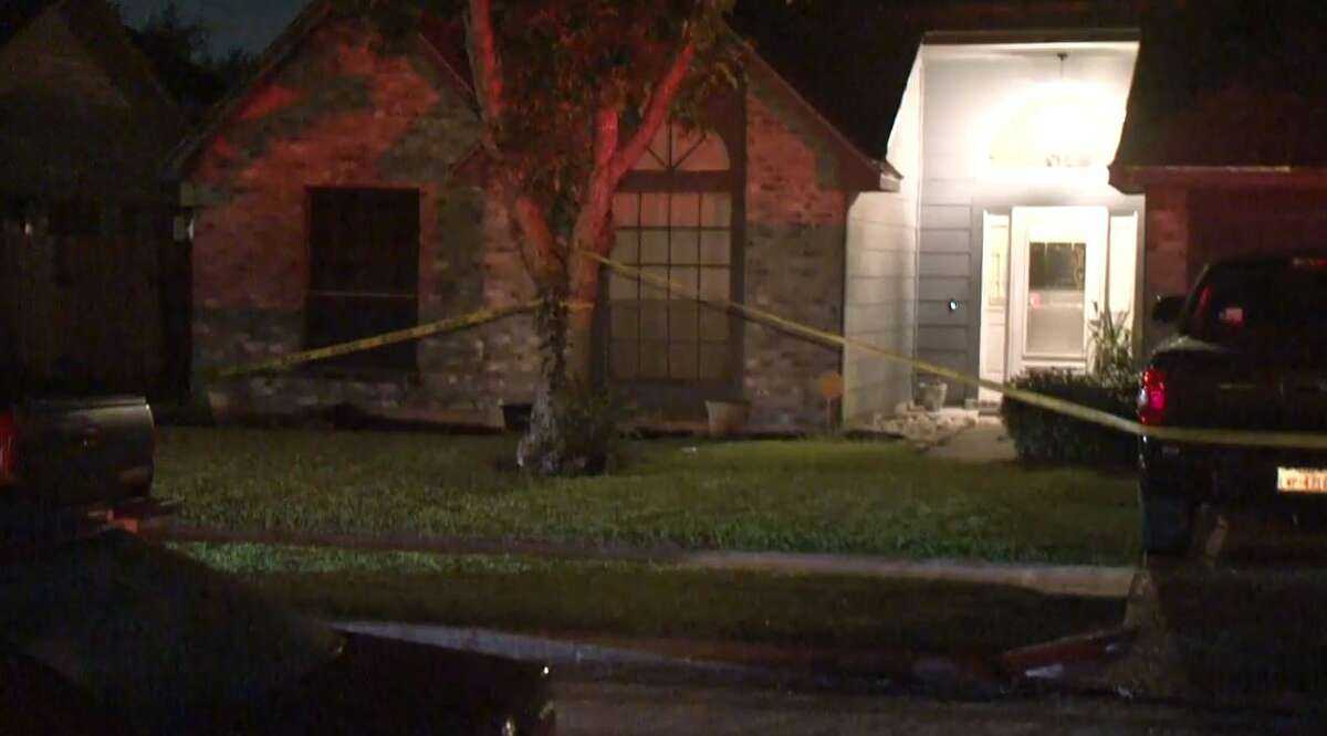 Two people were injured in a dog attack in a Pearland neighborhood south of Houston.