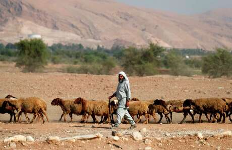 A Bedouin shepherd walks with his herd of sheep in the Jordan Valley in the Israeli-occupied West Bank on September 11, 2019. - Israeli Prime Minister Benjamin Netanyahu's pre-election pledge to annex the West Bank's Jordan Valley drew praise from right-wing allies , but opponents called it a desperate bid to remain in office.