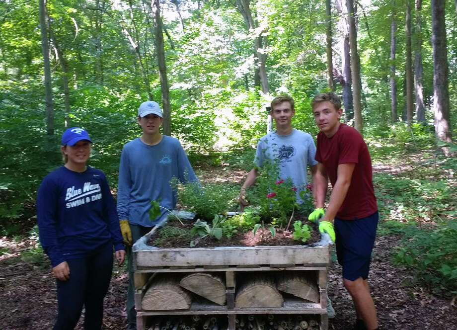 Brielle Racanelli, left, Maximus Racanelli, Jack Holly and Ian Holly help to build the insect hotel. Photo: Darien Community Association / Contributed Photo