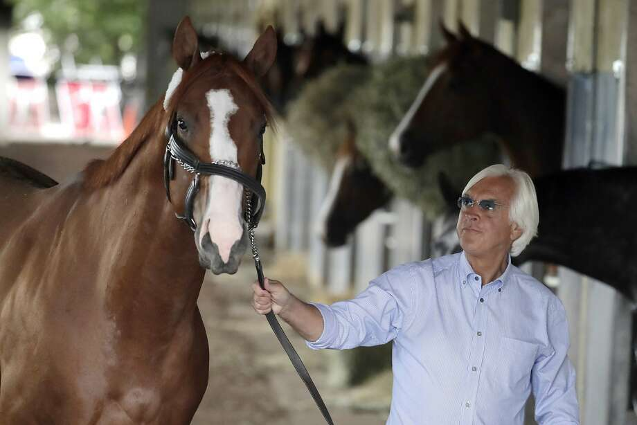 FILE - In this June 6, 2018, file photo, trainer Bob Baffert walks Justify around the barn after arriving at Belmont Park in Elmont, N.Y. Attorney W. Craig Robertson, a lawyer for Baffert said Thursday, Sept. 12, 2019, that the Hall of Fame trainer did not intentionally give 2018 Triple Crown winning horse Justify a banned substance that caused a positive test prior to the Kentucky Derby. Robertson contends the substance came from contaminated food. (AP Photo/Julio Cortez, File) Photo: Julio Cortez, Associated Press