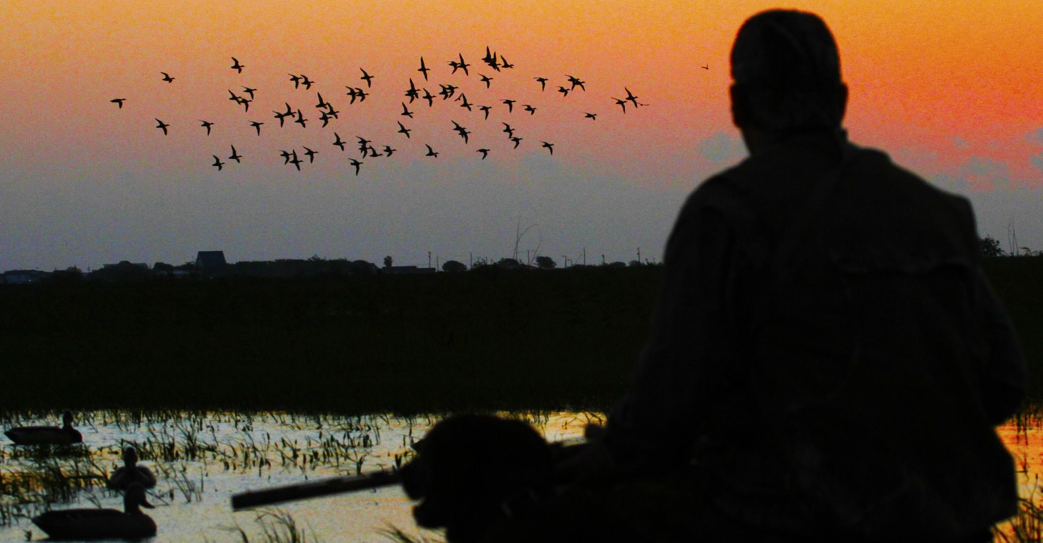 Teal season arrives for Texas hunters, and it'll be a scorcher