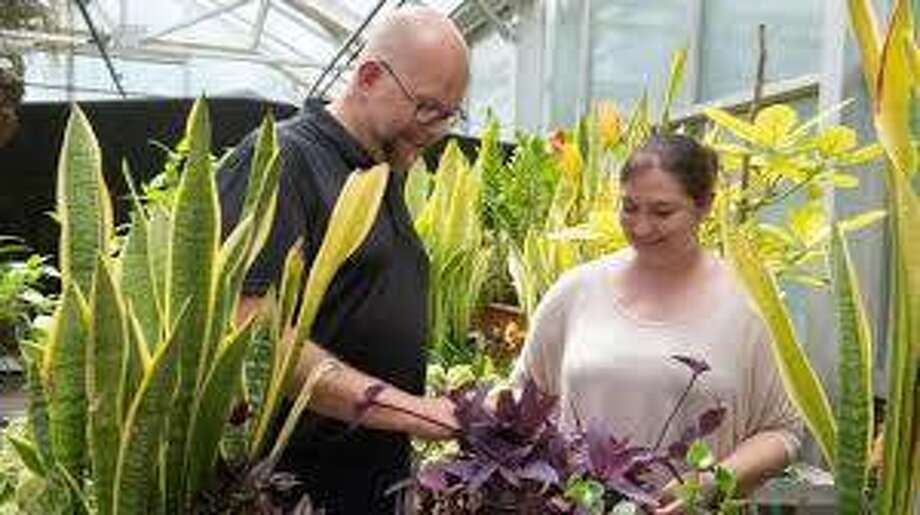 Jon Clark, laboratory manager for the Department of Biological Sciences, left, and former graduate assistant Toria Trost of East Alton check on plants housed in the Southern Illinois University Edwardsville Greenhouse in this photo from June.
