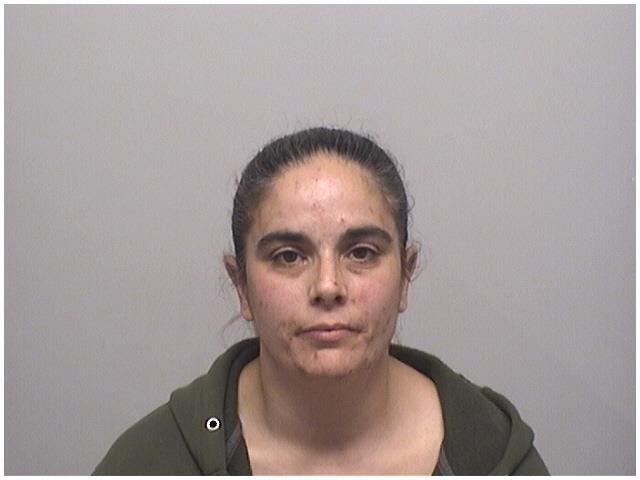 New Haven woman charged in Stamford tool theft investigation