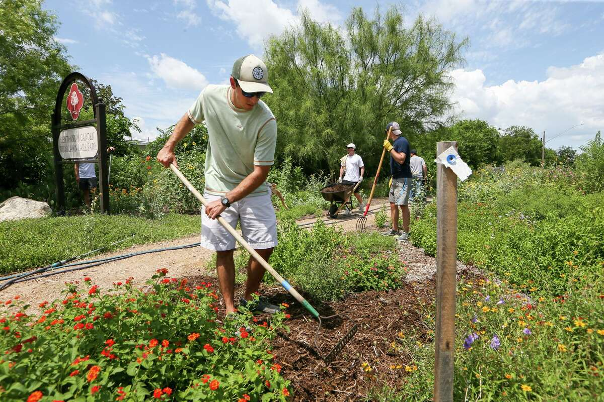 Lukin King rakes a flower bed as members of the DIG League, a local fantasy football league founded in 2013, volunteer their time working on the Centennial Garden at Woodlawn Lake Park on Sunday, July 14, 2019.