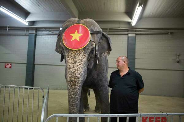 An unspoken bond between trainers and their circus animals