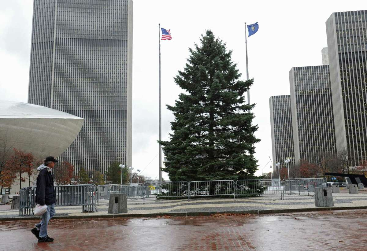 The New York State holiday tree stand at the Empire State Plaza on Thursday, Nov. 12, 2015 in Albany, N.Y. The blue spruce was donated by the Parks family of Schenectady. (Lori Van Buren / Times Union)