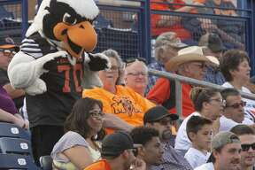 UTPB's Freddie the Falcon dances in the stands with fans 09/14/19 as they play Northern Michigan at Grande Communications Stadium. Tim Fischer/Reporter-Telegram