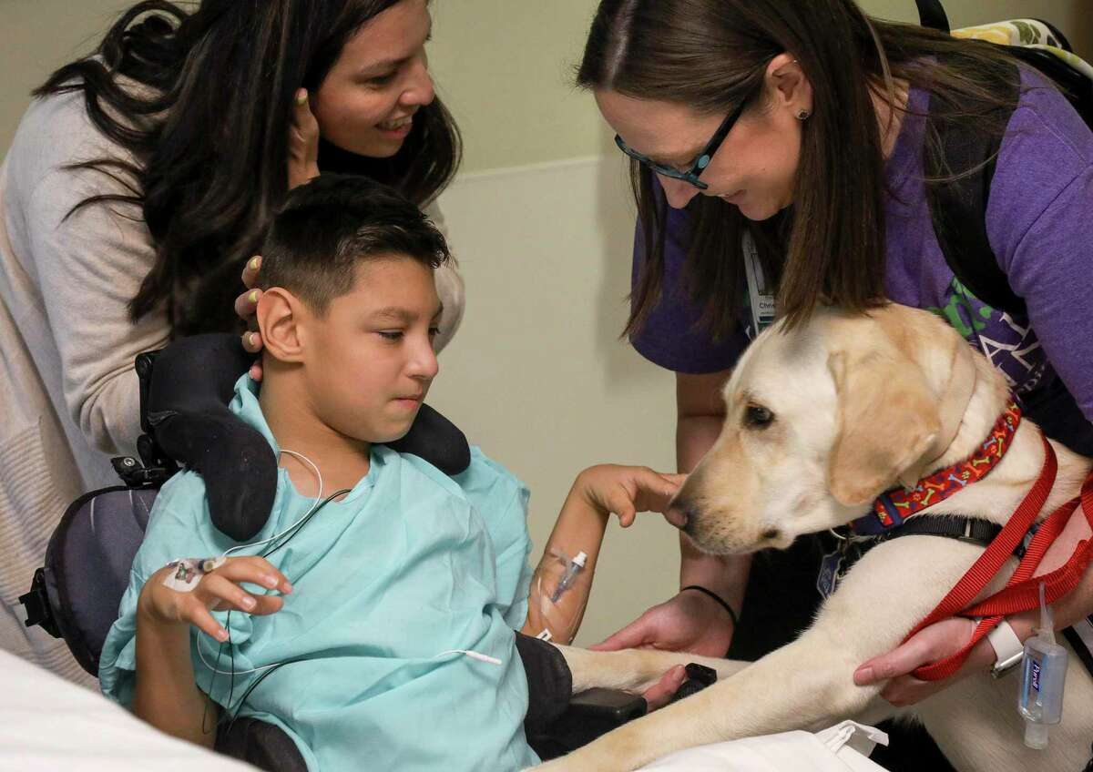 Nathan Deaton, 10, pets Dexter with the help of his mom, Aydee Deaton, left, and Christy Lange, a certified child life specialist, during a visit to his hospital room at Children's Memorial Hermann Hospital.